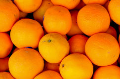 Background of many orange Royalty Free Stock Images