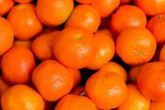 Background of many oranges Royalty Free Stock Photo