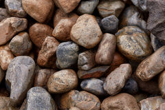 Background of many rough wet stones after rain. Texture Royalty Free Stock Photo
