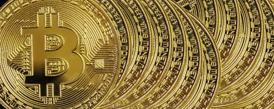 Many golden bitcoins as a background Stock Photography
