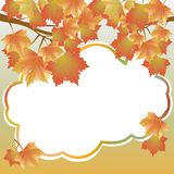 Background with maple branches Stock Images