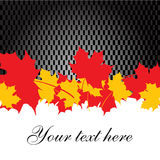 Background with maple leaves Royalty Free Stock Photography