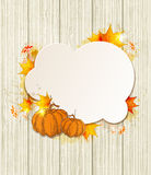 Background with maple leaves and pumpkin Stock Photography
