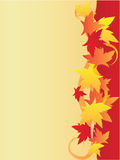 Background with maple leaves.Vertical variant Stock Photos