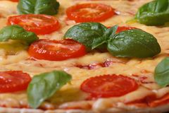Background margarita pizza with tomato, basil and cheese Stock Photos