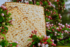 Background with matzo and for Jewish Passover celebration Stock Photos