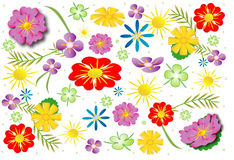 Background with meadow flowers Stock Photography