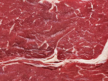 Background meat grain cowhide Royalty Free Stock Image