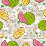 Background with melon and watermelon, vector Stock Photography