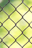 Background of the metal mesh fence.  Royalty Free Stock Image