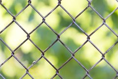 Background of the metal mesh fence.  Royalty Free Stock Photography