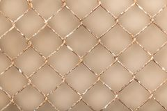 Background of the metal mesh fence. Photo of an abstract texture Stock Photos