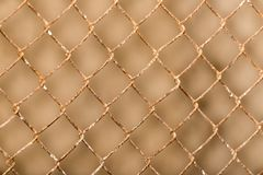 Background of the metal mesh fence. Photo of an abstract texture Stock Images
