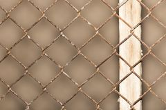 Background of the metal mesh fence . Photo of abstract textures Royalty Free Stock Images