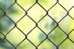 Background of the metal mesh fence. In the park in nature Royalty Free Stock Images