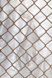 Background of the metal mesh fence. A photo Stock Images