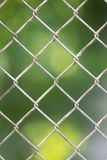 Background of the metal mesh fence. Photo of abstract background Royalty Free Stock Image