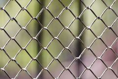 Background of the metal mesh on the nature.  Royalty Free Stock Images