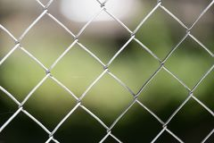 Background of the metal mesh on the nature.  Stock Photos