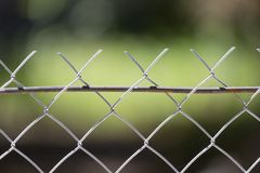 Background of the metal mesh on the nature.  Stock Images