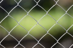 Background of the metal mesh on the nature.  Royalty Free Stock Image