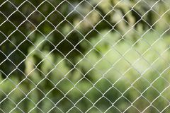 Background of the metal mesh on the nature.  Royalty Free Stock Photo