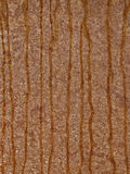 Background, metal, steel, texture, beige, brown, streaks Royalty Free Stock Photography