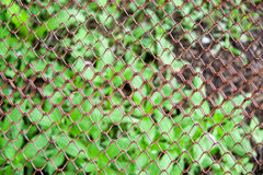 Background of the metal wire mesh fence Stock Image