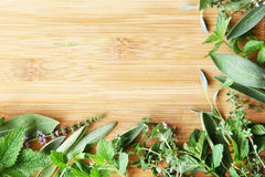 Background: mix of herbs - sage, mint, thyme on wooden surface. Mix of herbs - sage, mint, thyme on wooden surface royalty free stock image