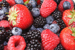 Background of mixed berries Royalty Free Stock Photos
