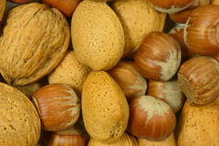 Background of mixed nuts Stock Image