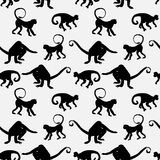 Background with monkey silhouettes Stock Images