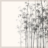 Background with monochrome bamboo. Stock Image