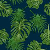 Background with monstera and palm leaves on navy blue royalty free illustration