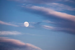 Background with moon Royalty Free Stock Photography