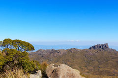 Background mountain landscape peak Prateleiras, Itatiaia, Brazil. Background mountain landscape peak Prateleiras tree, national park Itatiaia, Brazil Royalty Free Stock Image