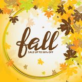 Background with multicolor autumn leaves. Vector illustration. Royalty Free Stock Images