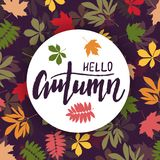 Background with multicolor autumn leaves. Vector illustration. Stock Photos