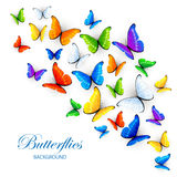 Background with multicolored butterflies Royalty Free Stock Photo