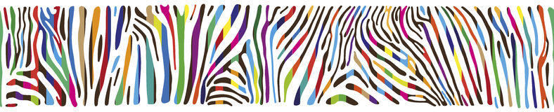 Background with multicolored Zebra skin Royalty Free Stock Image
