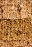 Background The natural texture of dry straw. Photo picture Background of The natural texture dry straw royalty free stock photos