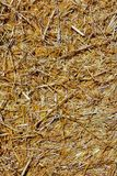 Background The natural texture of dry straw. Photo picture Background of The natural texture dry straw royalty free stock photo