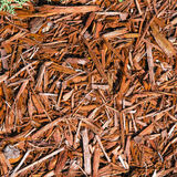 Background of natural wood shavings Stock Photos