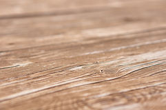Background of natural wood. Stock Photo