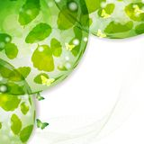 Background with nature green l Stock Photo