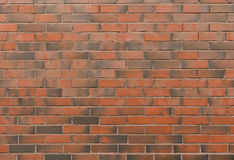 Background of new brick wall in red dark tones Stock Image