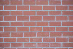 Background of the new bricks. Bonded with grey stripes cement mortar Stock Photo