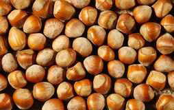 Background of Nuts. Close up photo of lots of nuts royalty free stock photos