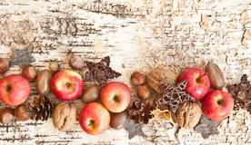 Background with nuts and apples royalty free stock images