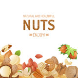 Background with nuts Stock Images